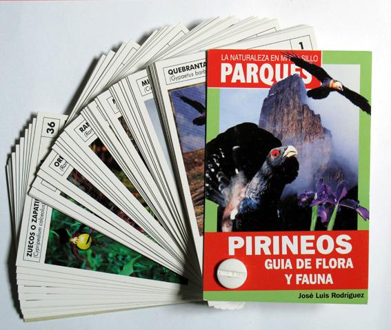 15-FICHERO DE PIRINEOS