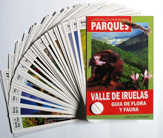 17-FICHERO VALLE IRUELAS
